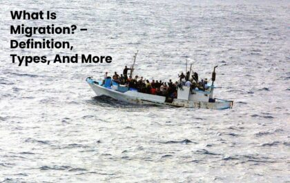 What Is Migration? – Definition, Types, And More